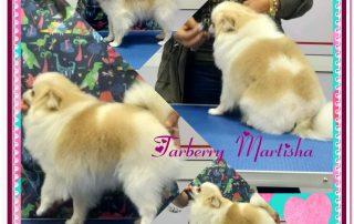 Yarberry Martisha